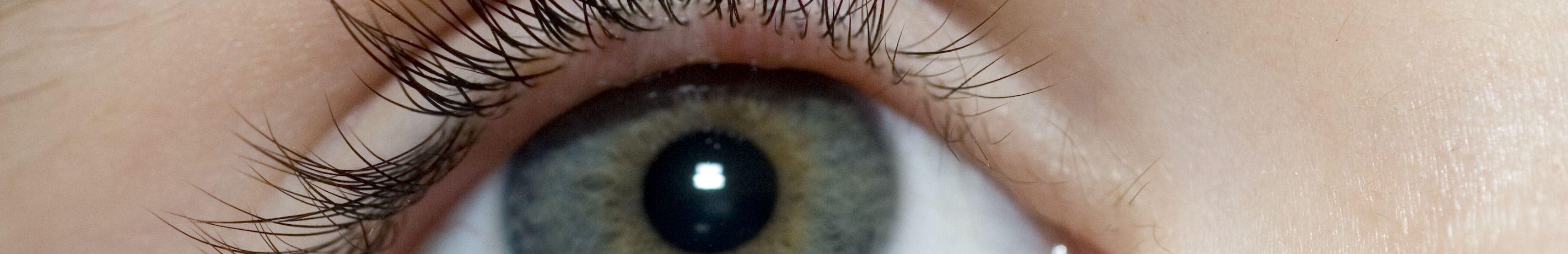 eye-stye