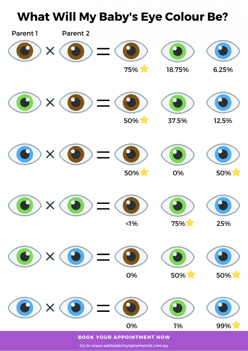 A chart to determine your childs Eye colour